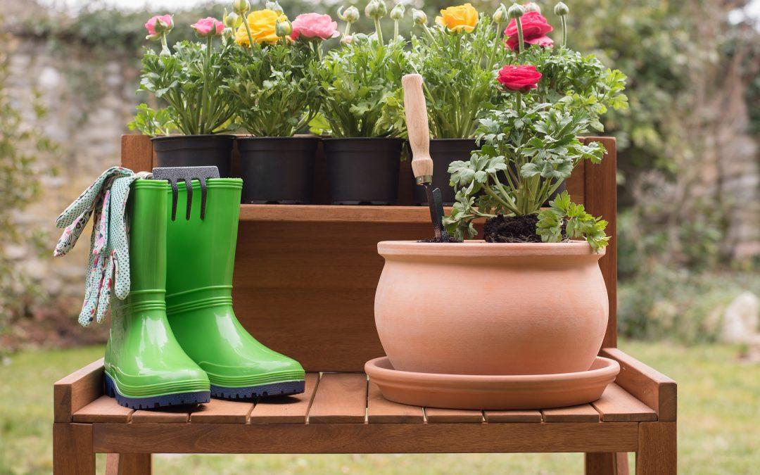 Naakt tuinieren op Bevrijdingsdag.