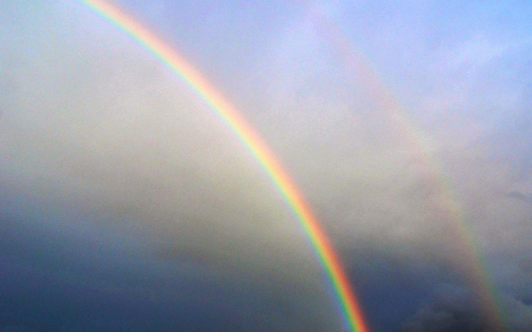 De dag van de regenboog.